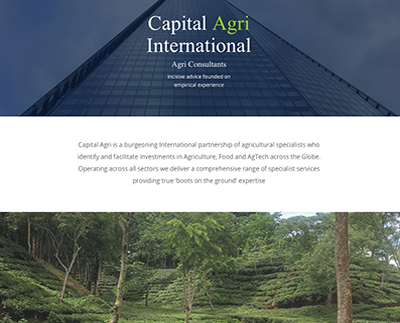 capital agri international